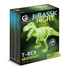 Jurassic Night T-Rex Scheletro