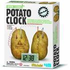 Green science - Orologio con patata (03275)