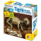 Discovery superkit fossili kit tigre sciabola