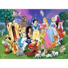 I miei preferiti Disney
