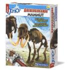 Focus Junior - Mammut (13806)