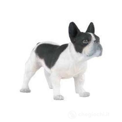 Bulldog francese bianco e nero (54006)