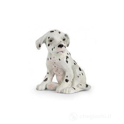 Cucciolo dalmata seduto (54022)