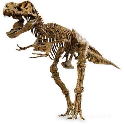 Scheletro Di T-Rex (IP30301)