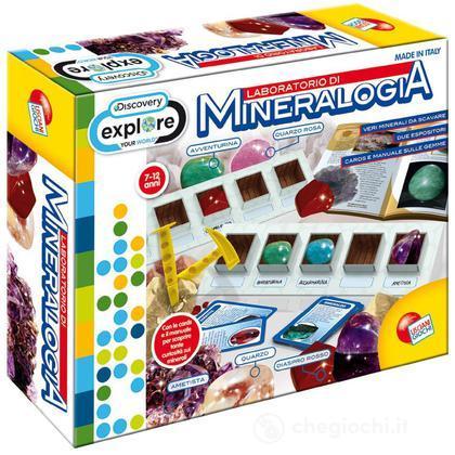 Discovery Laboratorio di Mineralogia (40322)
