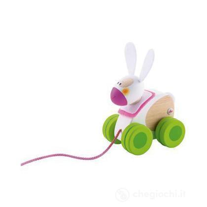 Mini trainabile coniglio