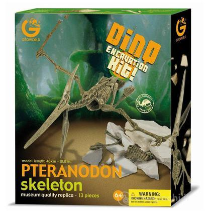 Excavation Kit Pteranodon Scheletro