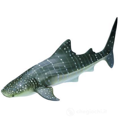 Squalo balena (16089)