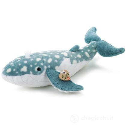 Balena WWF Oasi medio