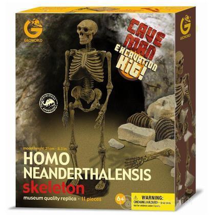 Cave Man Excavation Kit - Homo Neanderthalensis Scheletro
