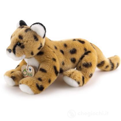Ghepardo WWF Oasi piccolo