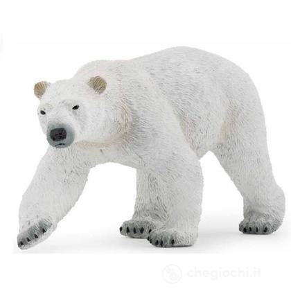 Orso polare            (50142)