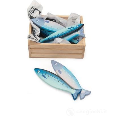 Cassetta di pesce (TV184)