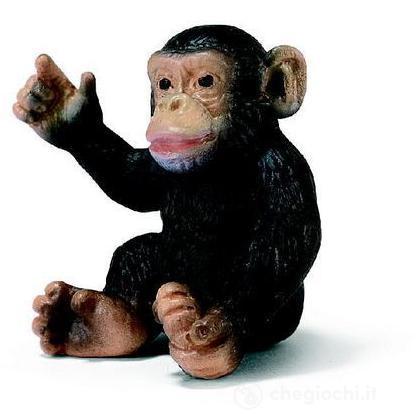 Scimpanzé cucciolo (14192)