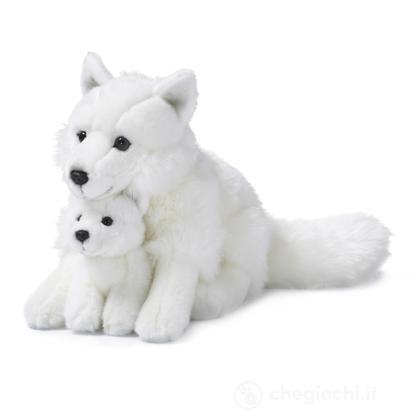Volpe artica madre e cucciolo