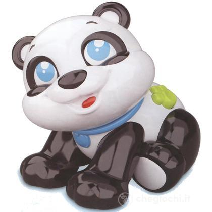 Panda cercacoccole (14214)