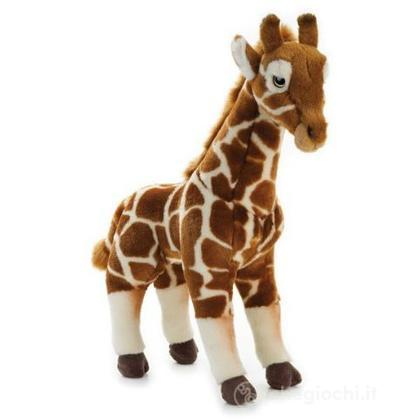 Giraffa Grande Eretta