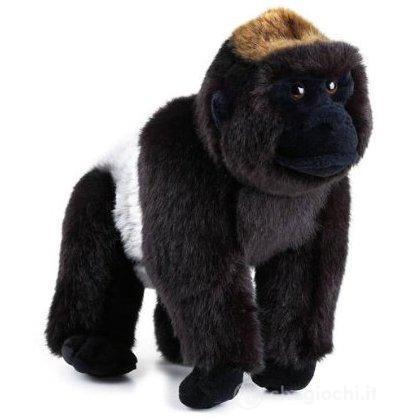 Gorilla Di Montagna Piccolo