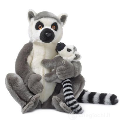Lemure madre e cucciolo
