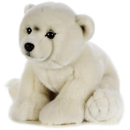 Orso Polare Grande