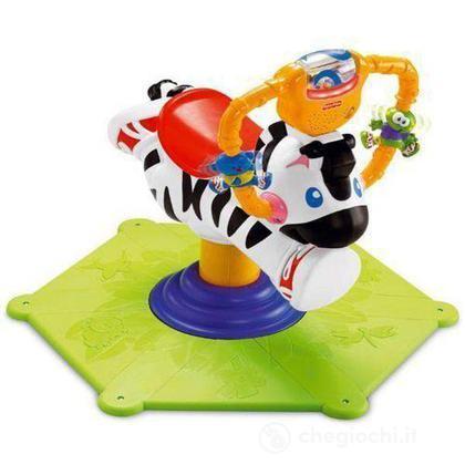 Zebra saltella e gira (K0317)