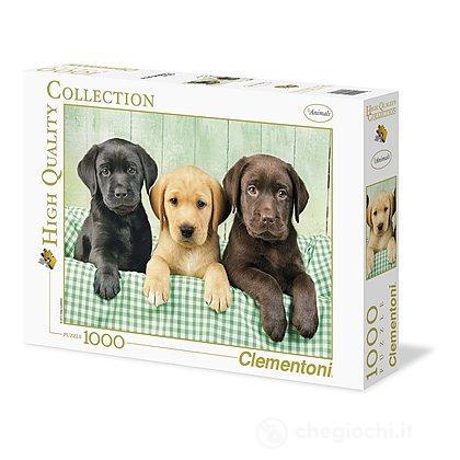 I tre Labrador 1000 pezzi High Quality Collection (39279)
