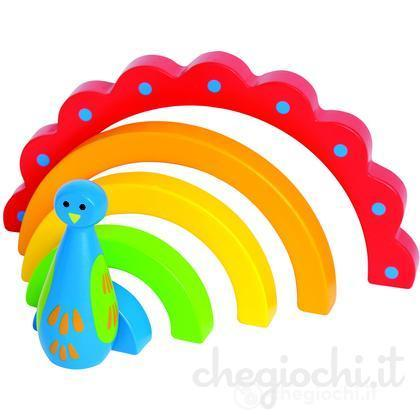 Pavone arcobaleno (E0403)