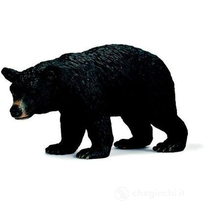 Orso nero (14316)