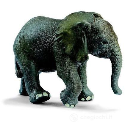 Elefantino (14322)