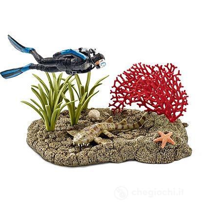 Subacqueo Nella Barriera Corallina (42328)