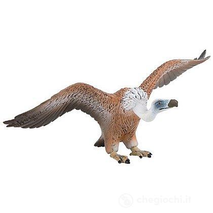 Avvoltoio (69350)