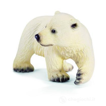 Cucciolo di orso polare (14358)