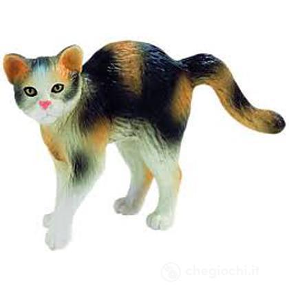 Gatto - Domestic Cat Moritz (66362)