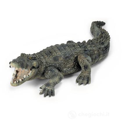 Coccodrillo (14378)