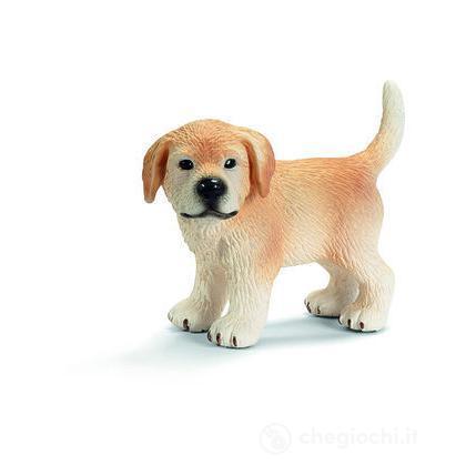 Golden Retriever cucciolo in piedi (16378)