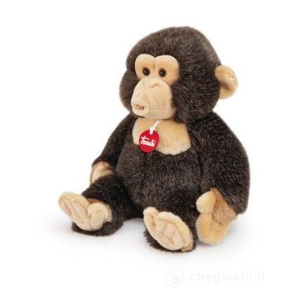 Scimpanzé Evaristo medio (27414)