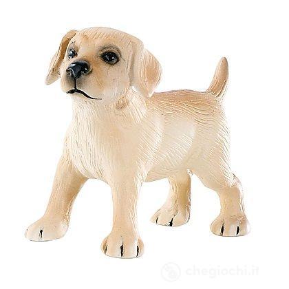 Cane - Labrador cucciolo Lucky (65432)