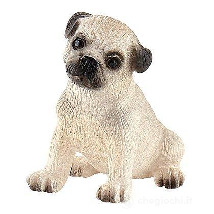 Cane - Carlino cucciolo Dolly (65438)