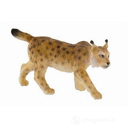 Lince (64449)