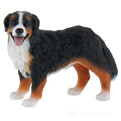 Cane - Bernese Mountain Dog Bianca (65449)