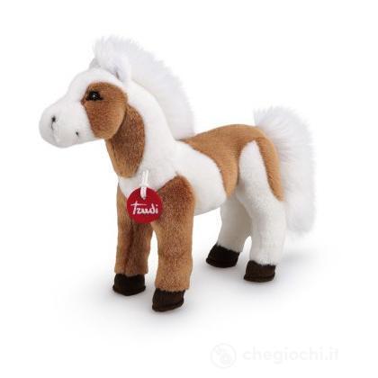 Cavallo Phil pinto (23530)