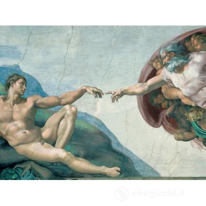 Michelangelo: La creazione
