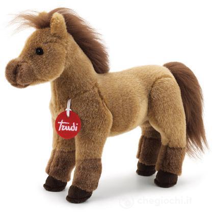 Cavallo marrone Caesar piccolo