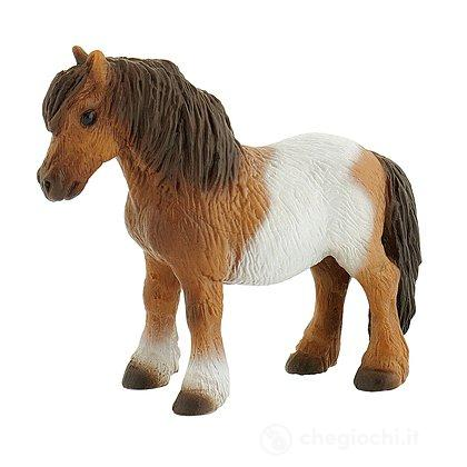 Cavalli - Shetland Pony (62566)