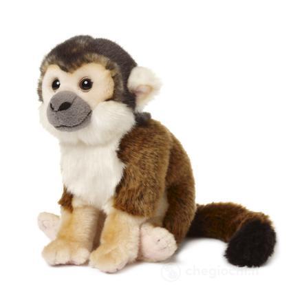 Scimmia scoiattolo piccola