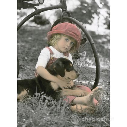 Un cane per amico