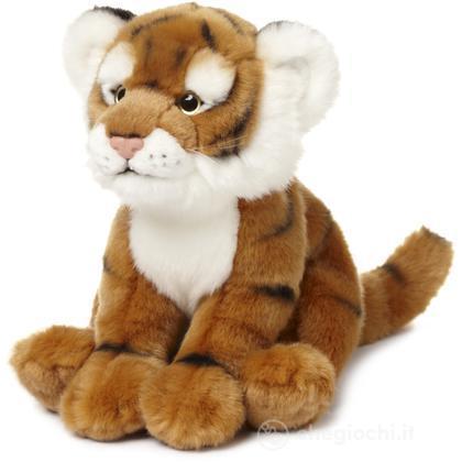 Tigre piccola