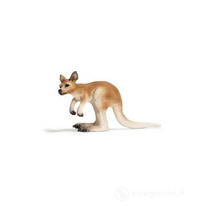 Canguro cucciolo (14608)