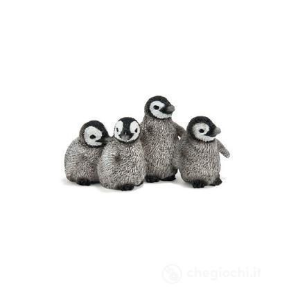 Pinguino reale cucciolo (14618)