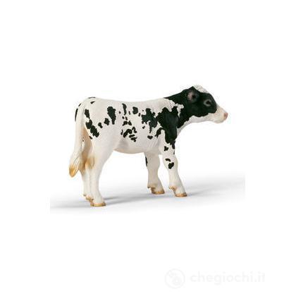 Vitello Holstein (13634)